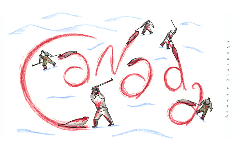 cartoon canada about the seal hunt, baby seal killing, seal slaughter
