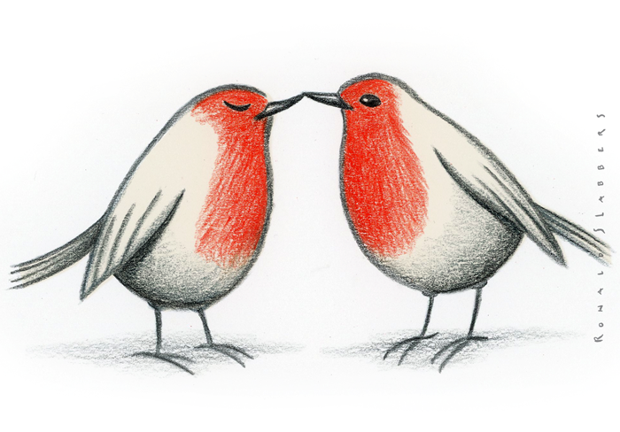 two robins in love